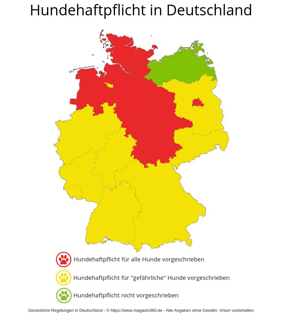 Hundehaftpflicht Pflicht - So sind die gesetzlichen Anforderungen an die Hundehaftpflichtversicherung in Deutschland