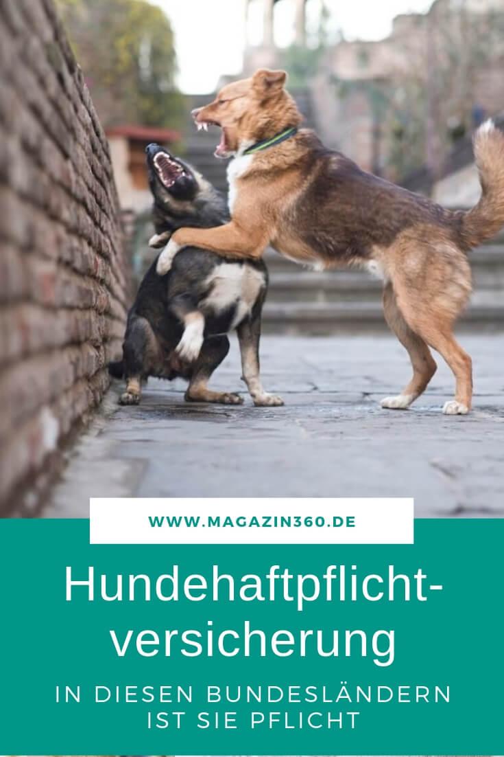 Hundehaftpflichtversicherung - In diesen Bundesländern ist sie Pflicht