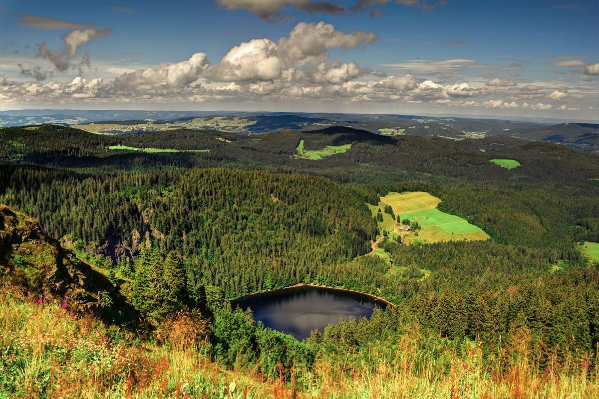 Der Schwarzwald gehört zu den beliebtesten Reisezielen in Deutschland und ist von Freiburg in kürzester Zeit erreichbar