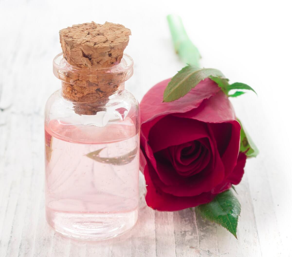 Rosenwasser ist ein beliebtes Kosmetikmittel für Haut und Haare