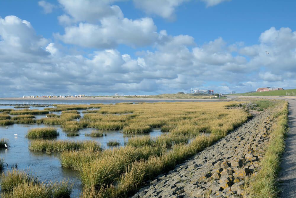 Das ostfriesische Wattenmeer hat viel zu bieten