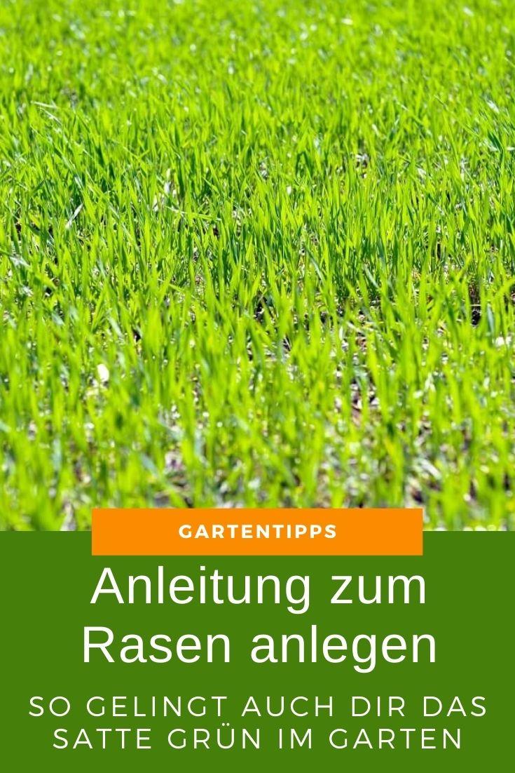 Anleitung zum Rasen anlegen - So gelingt auch dir das satte Grün in deinem Garten