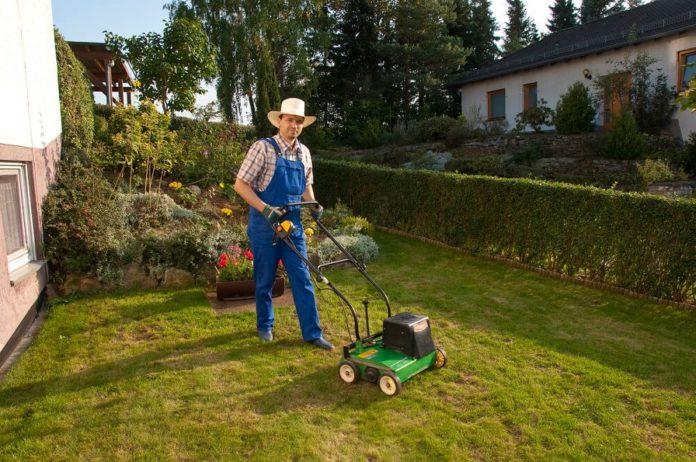 Der fertig vertikutierte Rasen erholt sich nun und erstrahlt mit der richtigen Nachbereitung im neuen Glanz