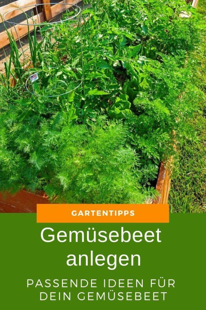 Eigenes Gemüsebeet anlegen - So gehst Du Schritt für Schritt vor