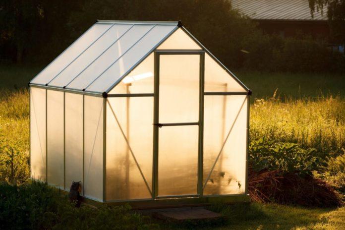 Kleingewächshäuser – Der richtige Boden und Erweiterungen durch Regale sorgen für tolle Ergebnisse