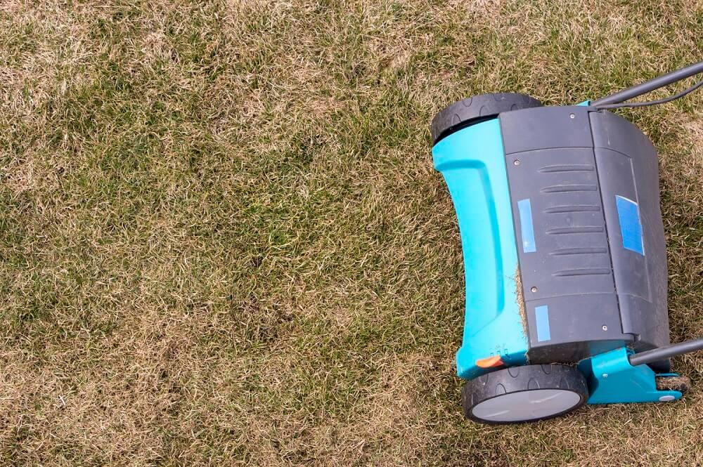 Rasen vertikutieren - Wann ist die beste Zeit? Tipps zum Vertikutieren im Frühling, Sommer und Herbst