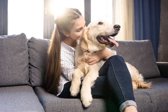 Darmsanierung beim Hund - So ist das Vorgehen